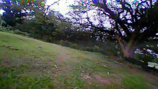 Kingkong q100 brushed micro fpv maiden