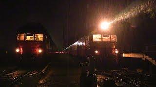 Дизель-поезда Д1 на ст. Унгены / D1 DMU