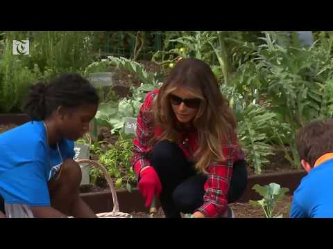 First Lady Melania Trump gardens at the White House
