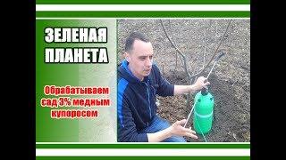Как опрыскивать деревья весной железным купоросом