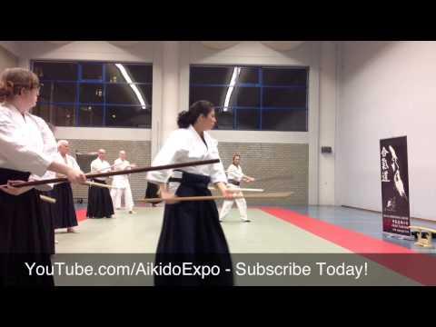 The Shooting Star - Aikido Jo