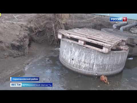 Управлением Россельхознадзора при проверке птицеводческого хозяйства в Астраханской области выявлены нарушения ветеринарного законодательства