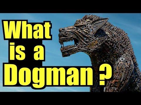 Dogman versus a Brand New Car, and It Was All Recorded by OnStar