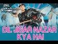 Dil Jigar Nazar Kya hai - Dil Ka Kya Kasoor - Divya Bharti & Prithvi
