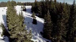 Salomon Carbon Skate Lab Ski
