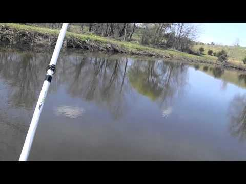 Bass fishing at a farm pond!