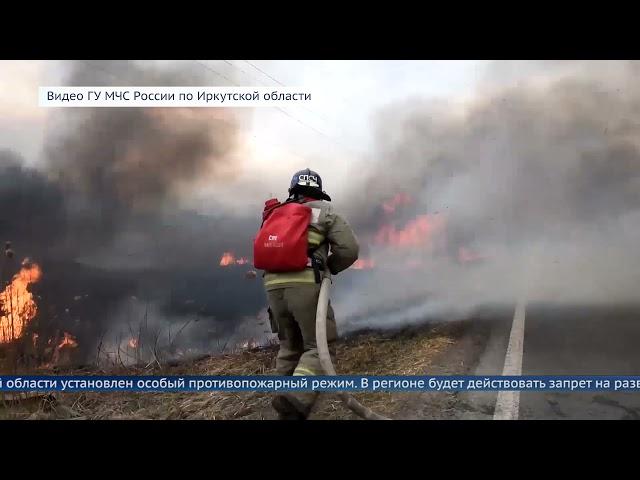 Особый противопожарный режим начнет действовать с 1 мая