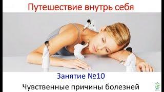 Курс Путешествие внутрь себя 19.  Н.Пейчев
