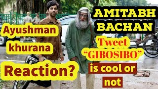 "Amitabh Bachchan suggest a short name for ""Gulabo Sitabo"" movie as GIBOSIBO 