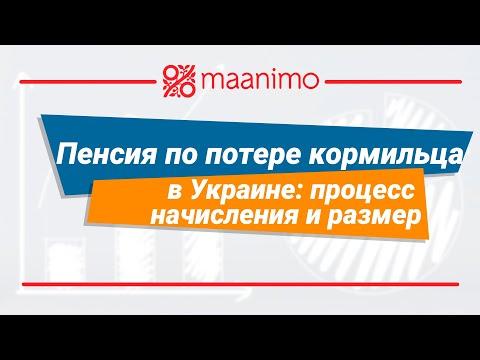 Пенсия по потере кормильца в Украине: процесс начисления и размер / maanimo