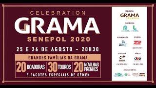 Grama 3017 fiv