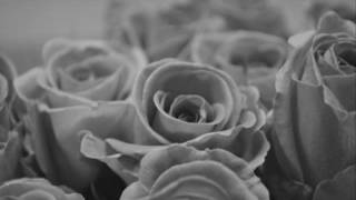 James Blunt   -   Blue On Blue  ( audio - lyrics )