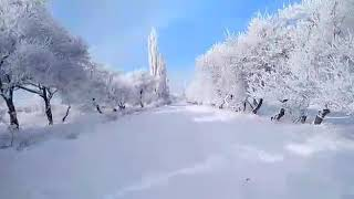 preview picture of video 'Мына кар деп ушуну айт!/ Winter in Kyrgyzstan beautiful view!'