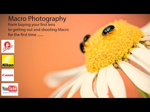 Shooting Macro Photography Sigma 105mm macro lens
