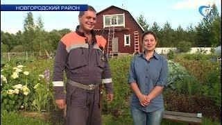 Новгородские спасатели и врачи скорой сумели эвакуировать женщину из глухой деревни на дрезине