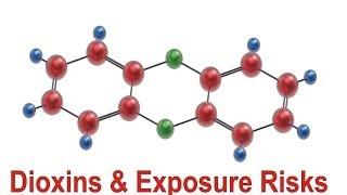 Dioxins & Exposure Risks