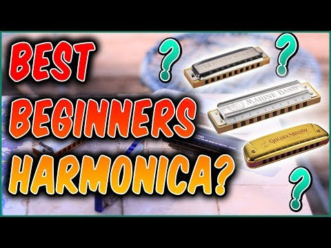 The Best Harmonica for Beginners? All the Answers Inside!