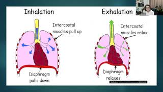 MDA Engage: Maintaining Breathing Function with a Neuromuscular Disease