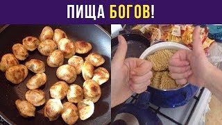 Приколы и мемы. Пища богов! | Мемозг #40