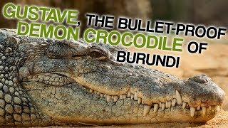 1f7dba8fbbb56 The Bulletproof Demon Crocodile of Burundi (Corporal Ben Dover)