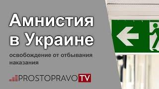 Амнистия 2019 в Украине: освобождение от отбывания наказания