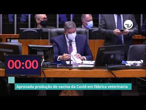 Aprovada produção de vacina da Covid em fábrica veterinária - 15/06/21