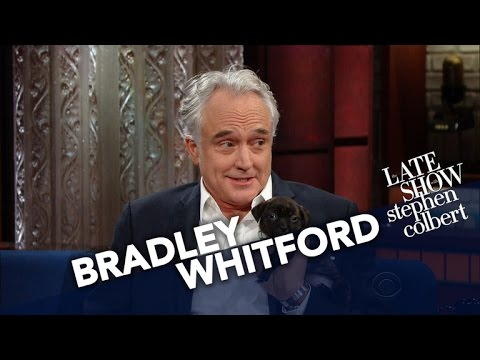 Bradley Whitford Needs A Service Dog To Deal With Trump's Presidency