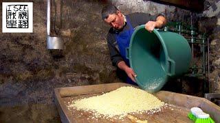 法国昂贵的布容涅奶酪来自欧布拉克乳牛纯手工制作