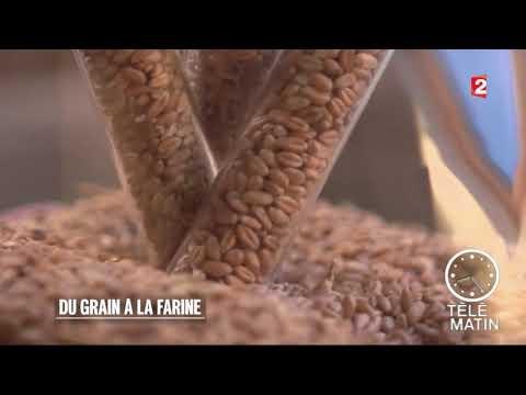 Conso - Du grain… à la farine