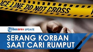 Kronologi Pembunuhan Istri dan Anak di Kutai Timur, Pelaku Serang Korban saat akan Mencari Rumput