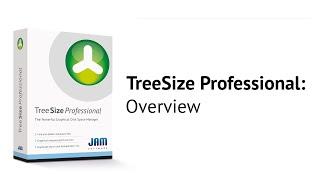 TreeSize Professional ניהול קבצים וחיפוש קבצים ותקיות גדולות