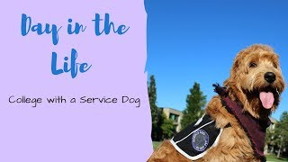 Day in the Life! || College with a Service Dog