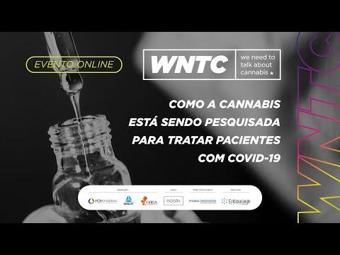 Como a Cannabis está sendo pesquisada para tratar pacientes com COVID-19