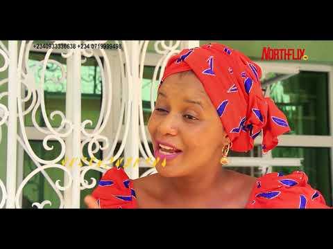 DAN BAZAWARA OFFICIAL Trailer   ARA Movies   Northflix