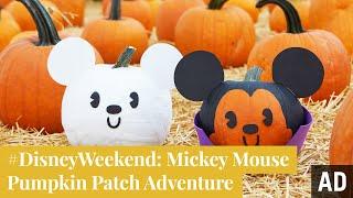Mickey Mouse Pumpkin Patch Adventure   #DisneyWeekend By Disney Family