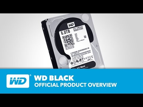 WD Black Hard Drives - Überblick
