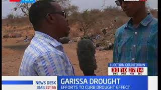More that 200 domestic animals die of drought in Garissa