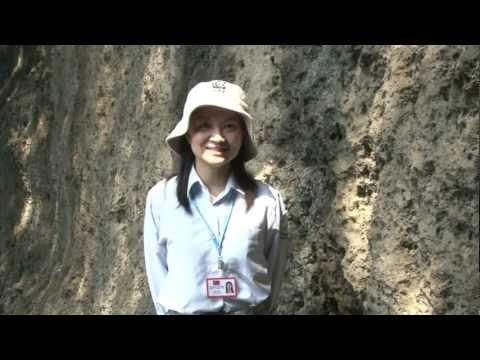 [行動解說員]墾丁國家公園- 鵝鑾鼻公園 ParksTaiwan  ParksTaiwan