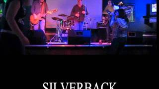 Silverback covering Shaky Ground
