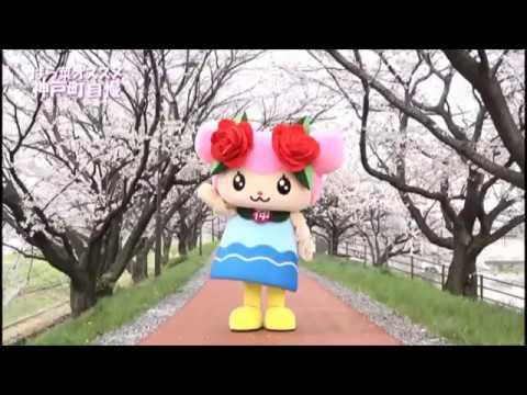 【神戸町】神戸町公式チャンネル