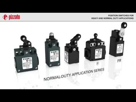 Pizzato Heavy Duty Limit Switch