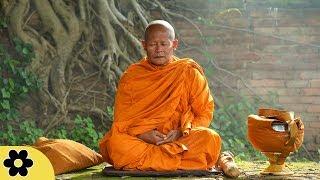 Tibetan Meditation Music, Meditation, Healing, Sleep, Chakra, Yoga, Spa, Study, Zen, Relax, ✿3186C
