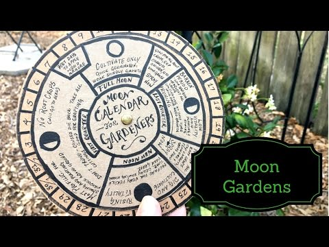 , title : 'Q&A: All About Moon Gardening