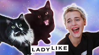 Devin Meets A Pet Psychic • Ladylike