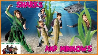 SHARKS And MINNOWS  That YouTub3 Family
