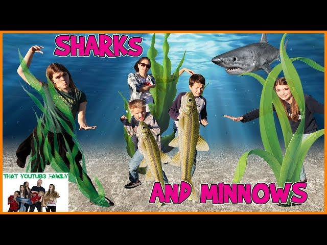 SHARKS and MINNOWS / That YouTub3 Family