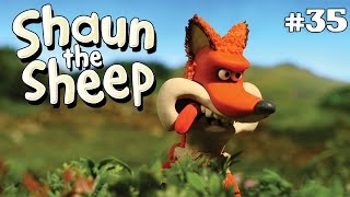 Download Video Shaun the Sheep - Serigala [Foxy Laddie] MP3 3GP MP4