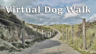 Dog Walk TV : TV for Dogs - Virtual Dog Walk at The Beach