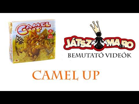 Camel up bemutató - Jatszma.ro
