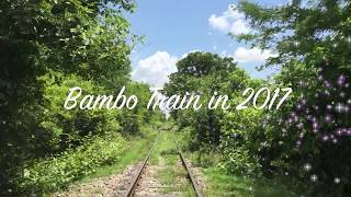 preview picture of video 'Bambo Train'